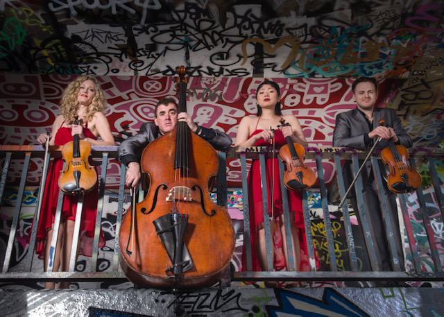 Fun string ensemble for weddings, parties and events